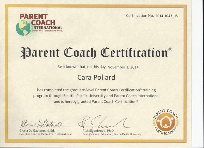 Becoming A Parent Coach Cara S Story Helene T Stelian